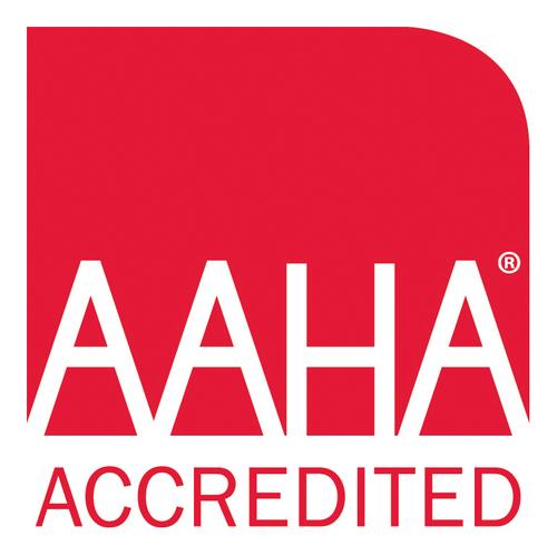 aaha certification