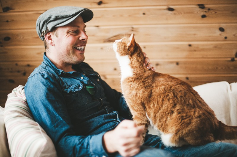 Did You Know That Owning a Cat Can Make You Healthier?
